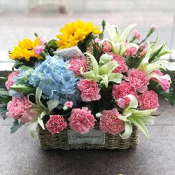 22朵粉色康乃馨花篮,一切美好围着你