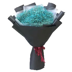 蓝色满天星巨星花束,人生每一天都爱你