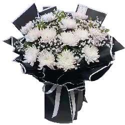 13朵白色菊花,缅怀故人