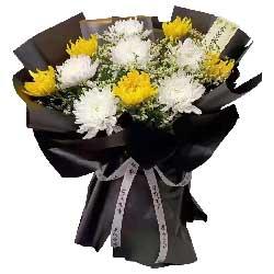 11朵菊花,人间月满花