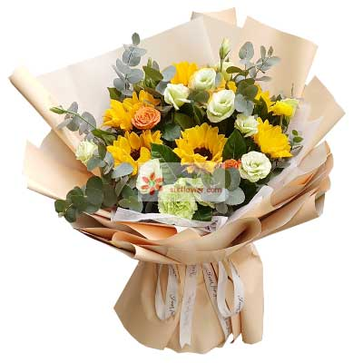 6朵向日葵,9朵洋桔梗,生活幸福快乐