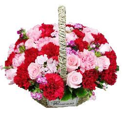 11朵粉玫瑰,22朵康乃馨,情意越久越浓