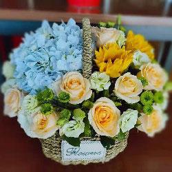19朵香槟玫瑰,2朵向日葵,温暖你的心房