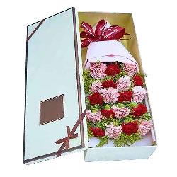 19朵康乃馨礼盒,好运送给你