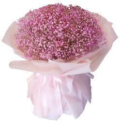 一大扎粉色满天星,祝你永远青春美丽