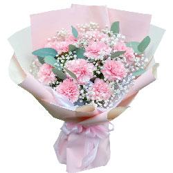 11朵粉色康乃馨,幸福到永远