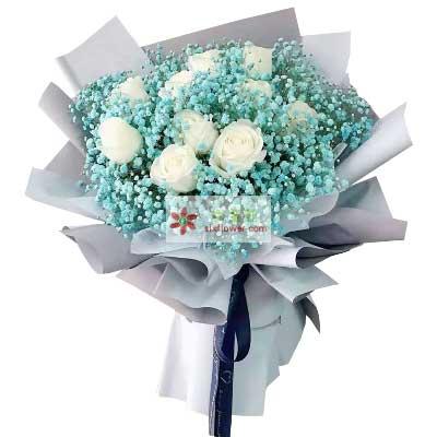 11朵白玫瑰蓝玫瑰,爱你一心一意