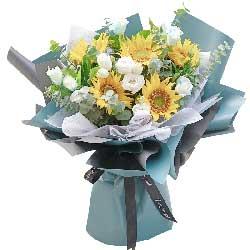 5朵向日葵,恭喜前途更加美好