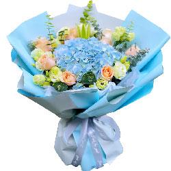 9朵戴安娜粉玫瑰,11朵桔梗,我要带走你的心