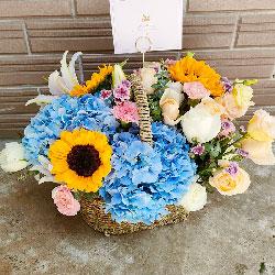 3朵向日葵,19朵玫瑰,祝福安康