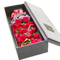 20朵红玫瑰礼盒,只有喜欢你