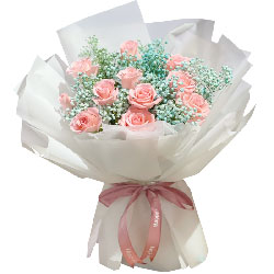 11朵粉玫瑰蓝色满天星,同老一生