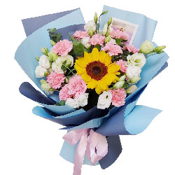 11朵粉色康乃馨,美好的祝愿