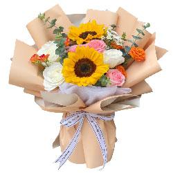 6朵玫瑰向日葵,福乐绵绵