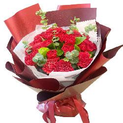 22朵红色康乃馨,爱您永恒