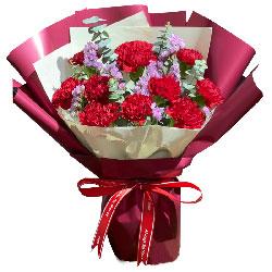 11朵红色康乃馨,您就是阳光温暖