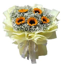 5朵向日葵满天星,相信你一定成功