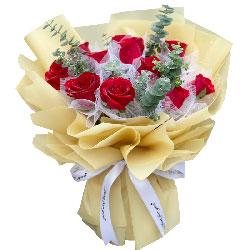 11朵红玫瑰尤加利,痴心的爱