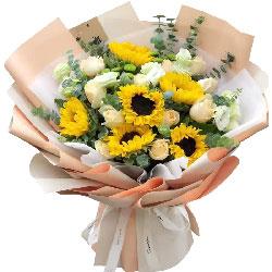 6朵向日葵,11朵香槟玫瑰,无私的爱