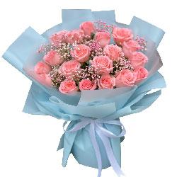 18朵戴安娜粉玫瑰,你是我心灵的依靠
