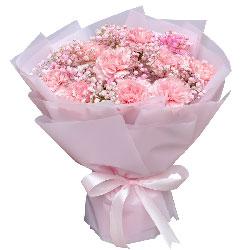 11朵康乃馨满天星,健康快乐