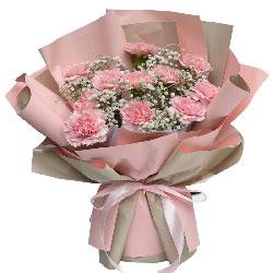 11朵粉色康乃馨满天星,美好生活