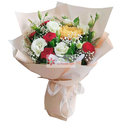 6朵红色康乃馨向日葵,平安快乐每一天