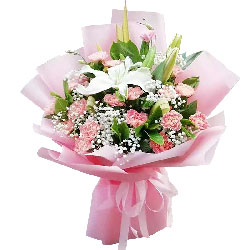 20朵粉色康乃馨百合,吉祥万事顺