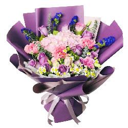 12朵紫玫瑰康乃馨,欣赏你的美