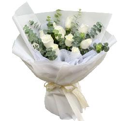 11朵白玫瑰,心里总是都是你