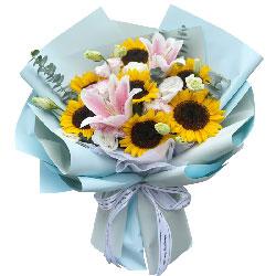7朵向日葵百合,将爱给最亲最爱的人