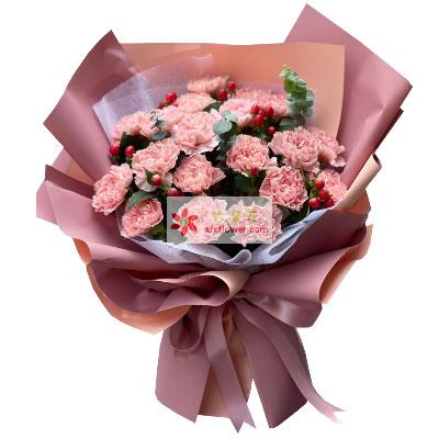 19朵粉色康乃馨,美妙生活