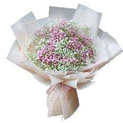 粉色白色满天星混搭,爱你是我生命的全部