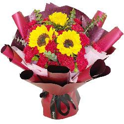 20朵红色康乃馨向日葵,洋溢喜悦