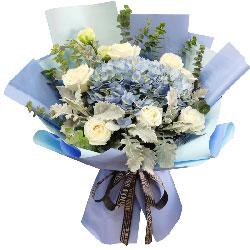 9朵白玫瑰,2朵蓝色绣球花,今生与你遇你可喜