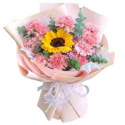 11朵粉色康乃馨向日葵,祝福你一生平安幸福