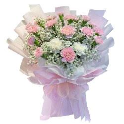 19朵粉色康乃馨,深深的祝福
